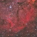 IC 1396 Elephant's Trunk,                                Steed Yu