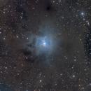 Iris Nebula - 16803 Version,                                Jim Morse