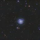 NGC3344,                                Carastro