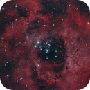 Rosetta nebula in HaRGB,                                Christiaan Berger