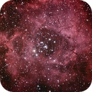 Rosette Nebula,                                stevebryson