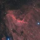 Nébuleuse du Pelican,                                Le Mouellic Guillaume