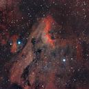 IC 5070 - Pelican Nebula,                                Dan Gallo
