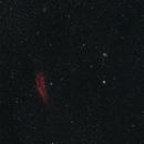 California Nebula wide field,                                BrettWaller