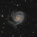 M101 Spairal Garaxy,                                KojiTajima