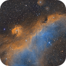Seagull Nebula (Narrowband Hubble Palette),                                Diego Cartes
