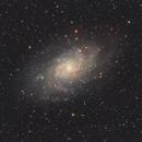 M33 Triangulum Galaxy,                                Matthew Enrietta