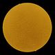 Sun h-alpha 23-02-2020,                                Nicolas-24