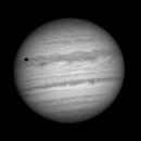 Jupiter and Io  (movie),                                Rouzbeh