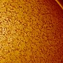 Sun prominence H-alpha,                                Antonio Soffici