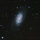 NGC 2903,                                John Leader