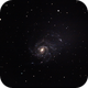 Pinwheel Galaxy (M101),                                Mark Bowles