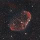 Crescent Nebula,                                Fritz