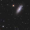 NGC2841,                                Kaori Iwakata