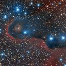 IC1396 Elephant Trunk Nebula,                                msmythers