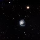 Messier 99 Coma Pinwheel,                                Kees Neve