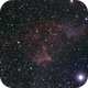 IC 63 & IC 59 - The Ghost of Cassiopeia,                                Jason Doyle