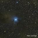 NGC7023 - Iris Nebula,                                Marc Corretge