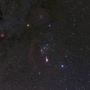 Orion,                                Miquel