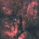IC1318 Gamma Cygni Nebula,                                wannaberocker_x