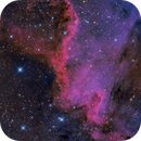 The Cygnus's Wall -- North America Nebula ,                                Lluis Romero Ventura