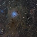 NGC 7023 - Iris nebula,                                Jerry@Caselle