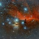 Horsehead and Flame Nebulas,                                David Augros