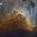 IC 5070 Pelican Nebula,                                Nathan Morgan (nm...