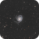M101,                                Andrei Gusan