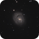 NGC 1637,                                Gary Imm