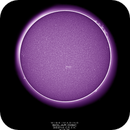 Solar Disc with Proms, CaK, 09-13-2018,                                Martin (Marty) Wise