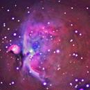 Orion Nebula,                                Jackie