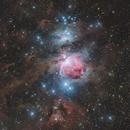 M42 : The Orion Nebula,                                Toshiya Arai