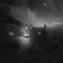 Horsehead inside Orion,                                Reinhard Kuske