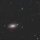 M63  and UGC08313,                                KAZUHIRO NONOMURA