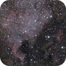 NGC7000 in 30 seconds,                                Jan Curtis