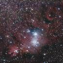 Cone Nebula,                                Chris Price