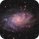 M33 - Combined data,                                Peter Folkesson