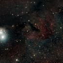 IC 348 in Perseus,                                John Schloemp
