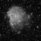 Monkey Head Nebula - 20200226 - Kelda 135mm F2.8 - Ha,                                altazastro