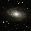 M81 and M82: Bode's Galaxy and Cigar Galaxy (2020),                                Daniel Tackley