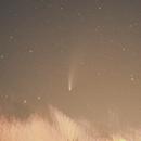 Comet C/2020 F3 NEOWISE with a Smartphone,                                Lucas Camargo da Silva