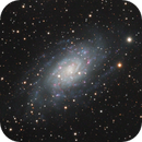 NGC2403 - Spiral galaxy in Camelopardalis,                                Jan Sjoerd de Vries