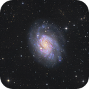 NGC300  in Sculptor -  with Sadr Chili,                                Arnaud Peel