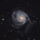 Messier 101,                                Henry Bolgehn
