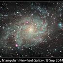 M33, Triangulum Pinwheel Galaxy, 19 Sep 2014,                                David Dearden