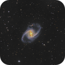 NGC1365 from the Fornax Cluster -  Sadr Chili,                                Arnaud Peel