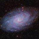 M33 LRGB+Ha,                                Mark Holbrook
