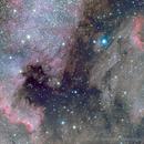 Between North America and the Pelican Nebula - LRGB,                                Rodolphe Goldsztejn