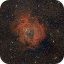 The Rosette with a touch of Ha,                                Lensman57